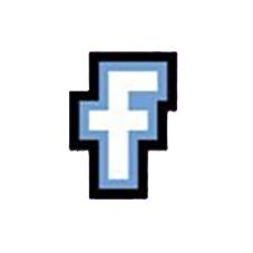 facebook Des Pies Chicaillent